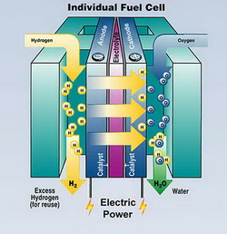 How to Build a Hydrogen Fuel Cell